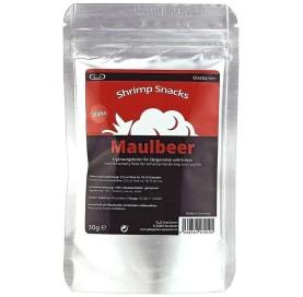 GlasGarten Maulbeer Morera 30gr