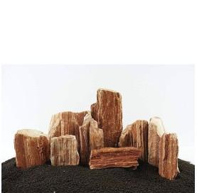 Roca Madera Petrificada