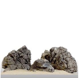 Roca Millenium