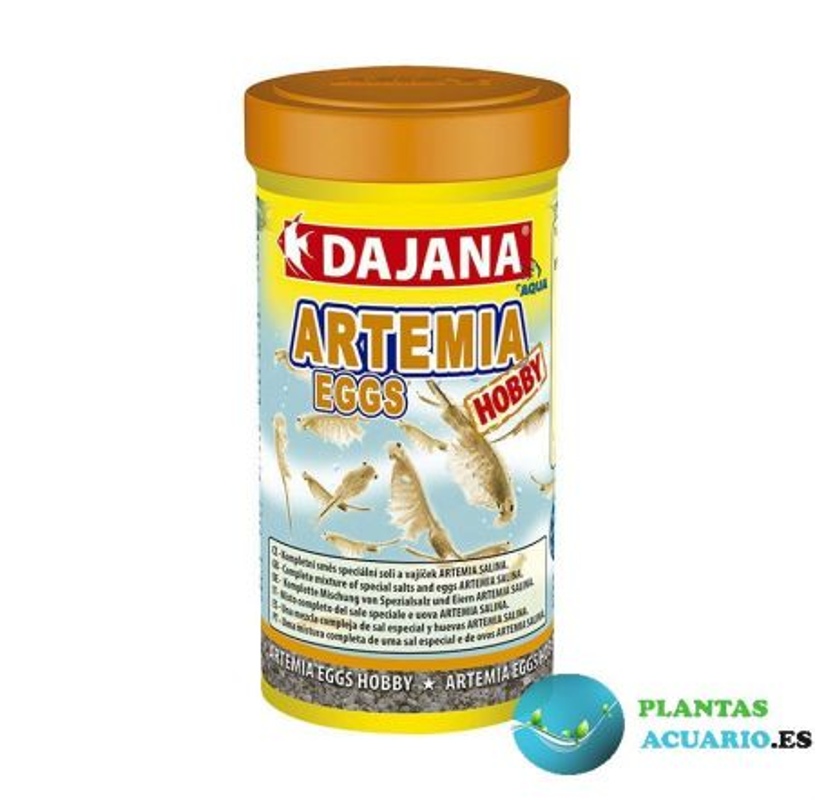 Huevos de artemia DAJANA