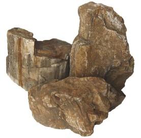 Roca Tronco Petrificado