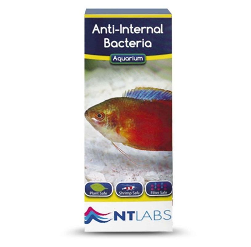 Anti-Internal Bacteria de NTLABS 100 g