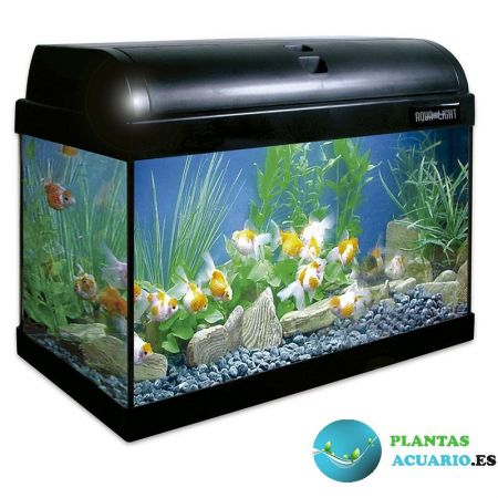 Kit Acuario AQUA-LIGHT 25 Litros