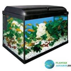 Kit Acuario AQUA-LIGHT 80 Litros