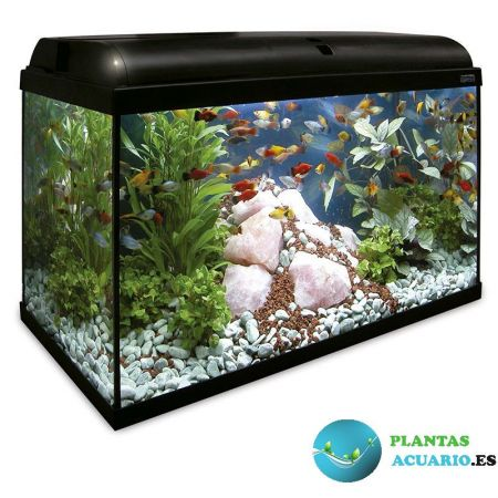 Kit Acuario AQUA-LIGHT 120 Litros