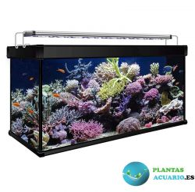 Kit Acuario Marino AQUA LUX PRO 450 Litros con filtro Hydra y Led