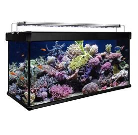 Kit Acuario Marino AQUA LUX PRO 300 Litros con filtro Hydra y Led