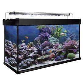 Kit Acuario Marino AQUA LUX PRO 100 Litros con filtro Hydra y Led