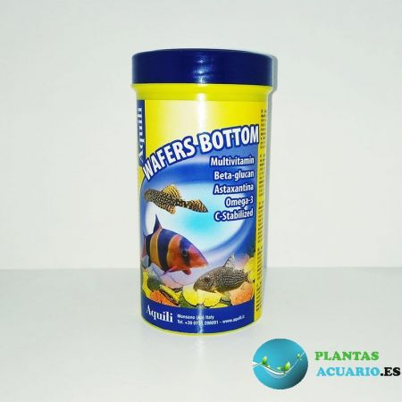 Discos de fondo Wafers Bottom 250ml Aquili